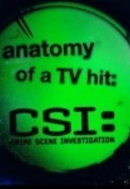 CSI: Anatomy of a TV Hit