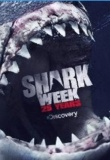 Air Jaws: Countdown to Shark Week 2013