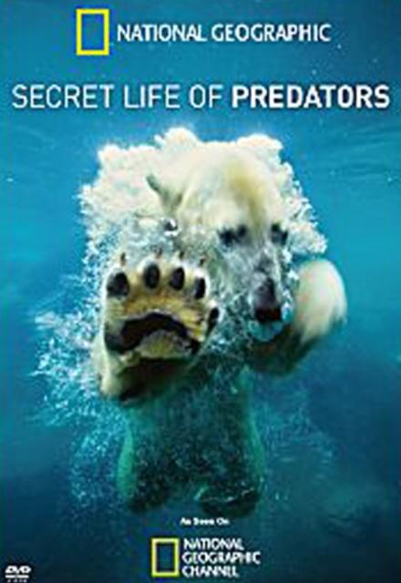The Secret Life of Predators