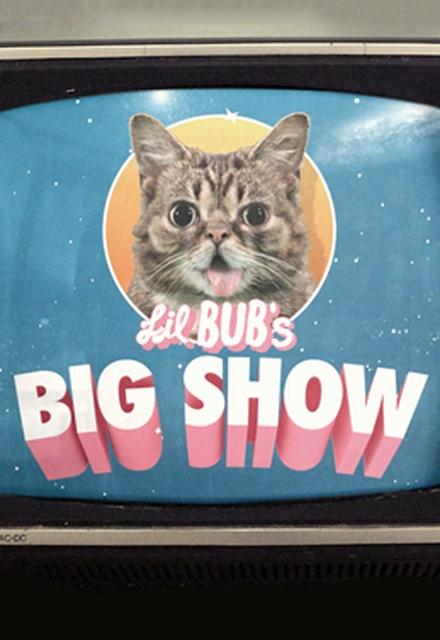 Lil Bub's Big Show