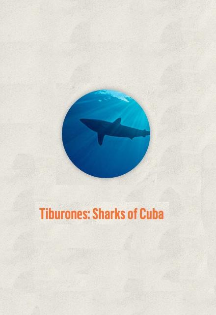 Tiburones: Sharks of Cuba
