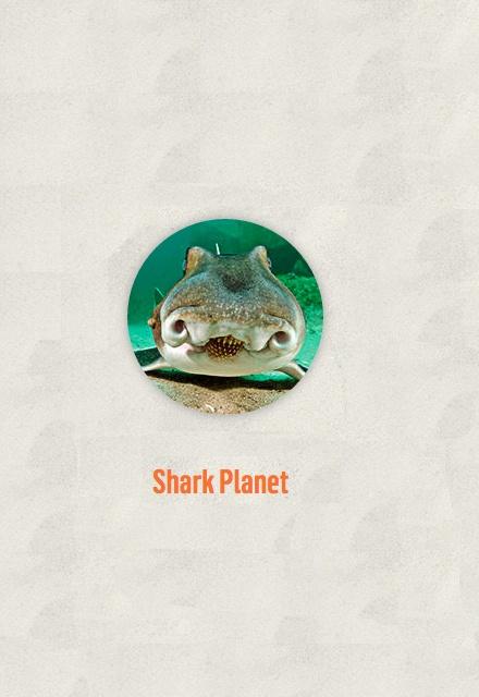 Shark Planet